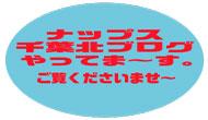 ナップス千葉北インター店ブログやっておりますよ~!